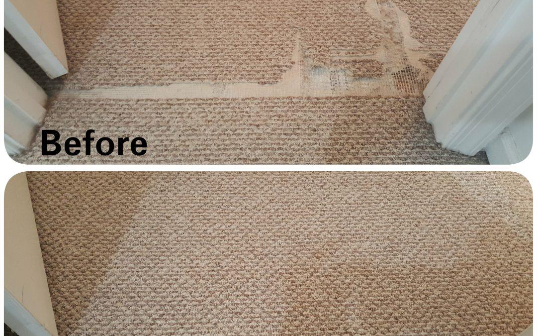 carpet-repair
